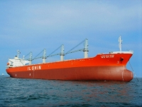Ilshin Shipping Company is adding an LNG fuelled bulk carrier to its existing fleet