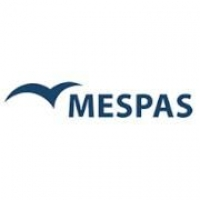MESPAS and NETVISION launch integrated ship management and crewing solution